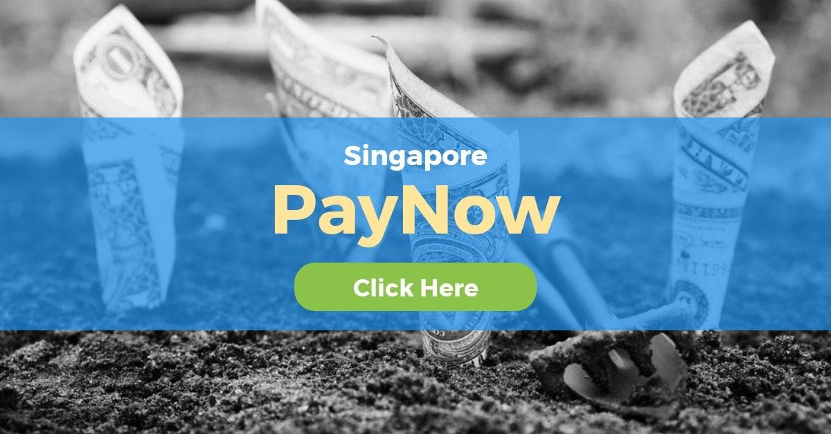 PayNow Singapore